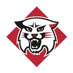 VCU Rams at Davidson Wildcats
