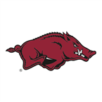 Florida Gators at Arkansas Razorbacks
