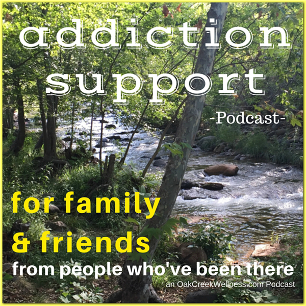 The Addiction Support Podcast: Addiction Support for Family