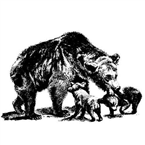 Bear Family Radio