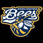 Burlington Bees Baseball Network