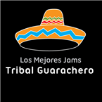 The Best Jams Tribal Guarachero