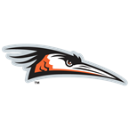 Delmarva Shorebirds Baseball Network