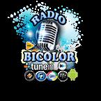 RADIO BICOLOR