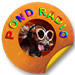 Pond Radio