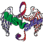 MSVStereo