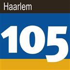 Haarlem Shuffle