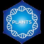 Positively Plants
