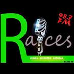 Radio Raices 98.7 FM