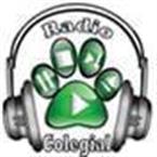 Radio Colegial