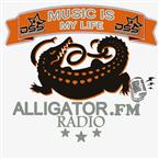 alligator.fm