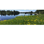 Sverigekanalen 2D