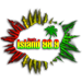 Island Radio 98.9 (KITH)