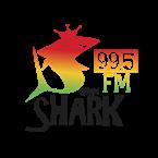 Guam Shark