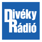 Diveky Radio Made In Hungary