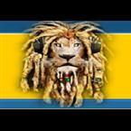 Lions - Radio