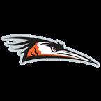 Delmarva Shorebirds Baseball Network