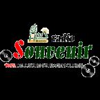 Schwany Souvenir Radio