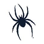 Spider IMG Sports Network
